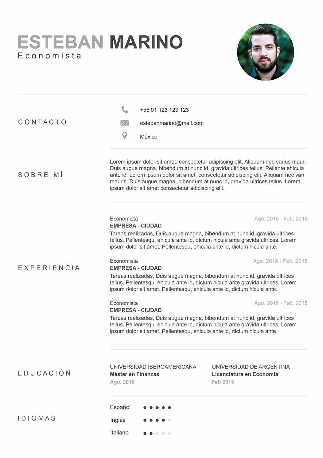 plantilla-curriculum-vitae-arizona-intemporal